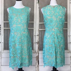4/$25 Beige by eci Blue and Tan Lace Fitted Dress